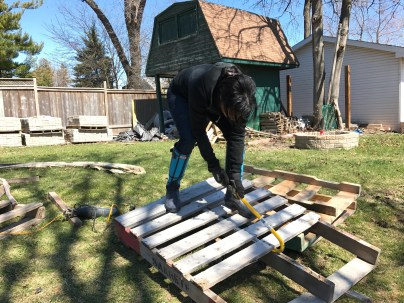 Taking apart pallets for a reclaimed wood feature wall | The Dreamhouse Project