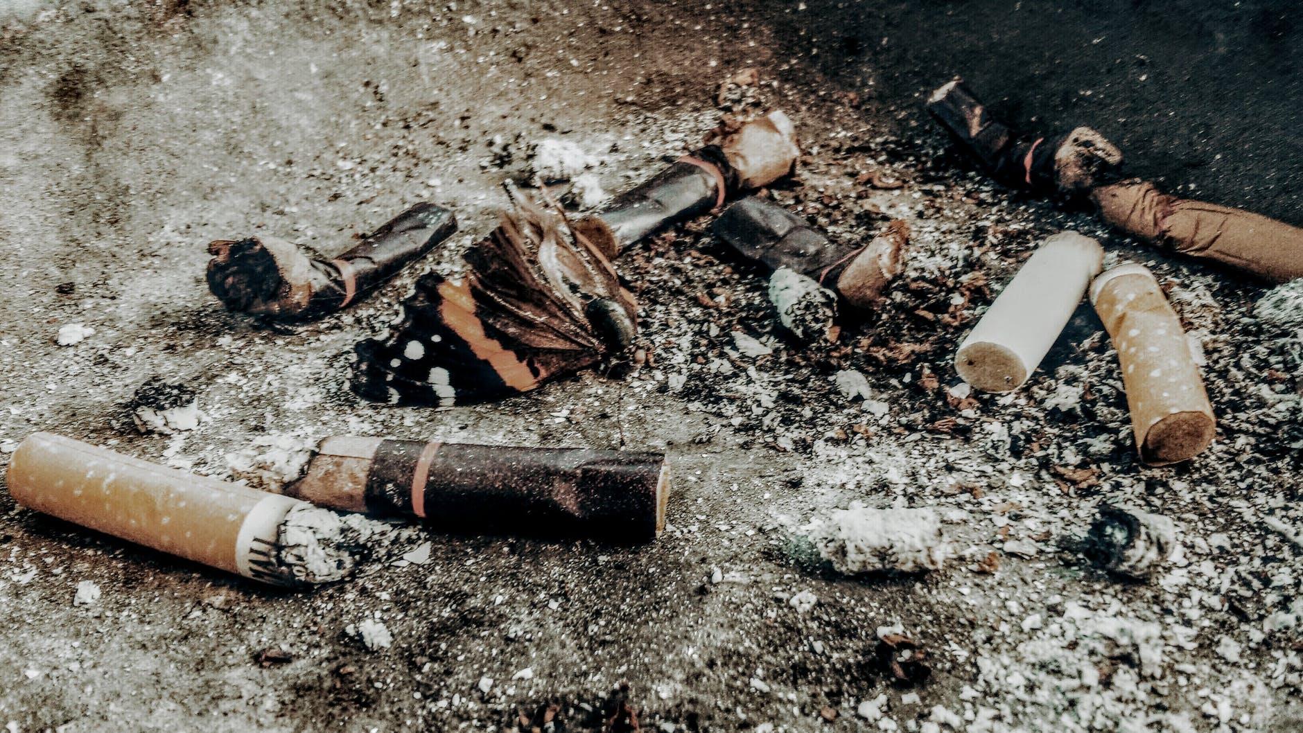 cigarette buts on brown soil
