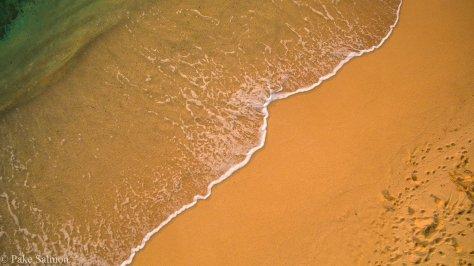 Shoreline-0094