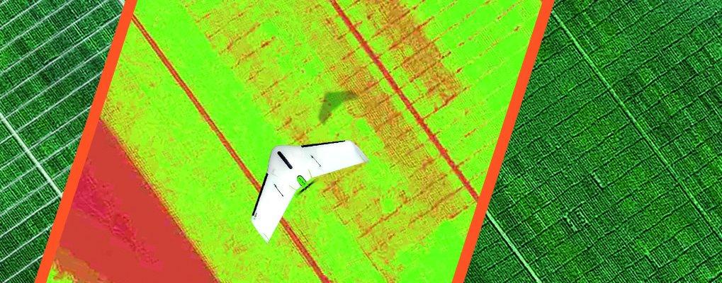 plant breeding plant breeder drone uav delair Phenome