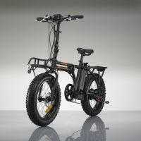 THE RADMINI ELECTRIC BIKE