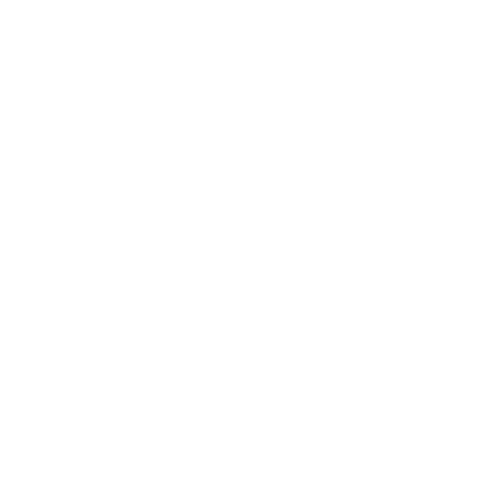 The Dry Age Boutique Logo
