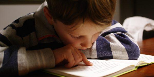Children's Book Line Editor