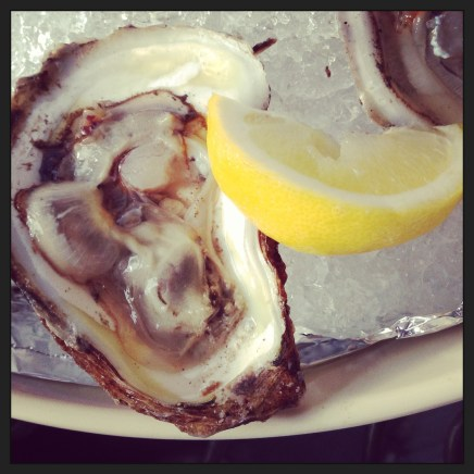 One of many oysters I shucked.