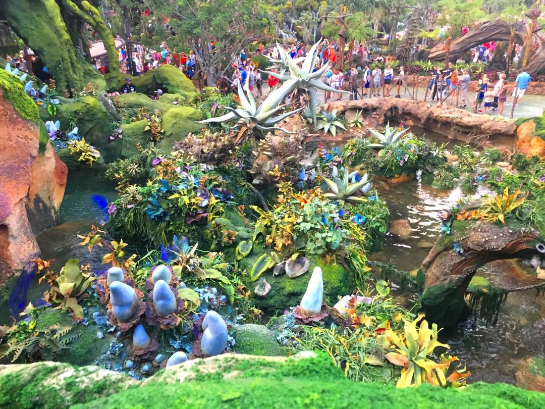 Plants of Pandora