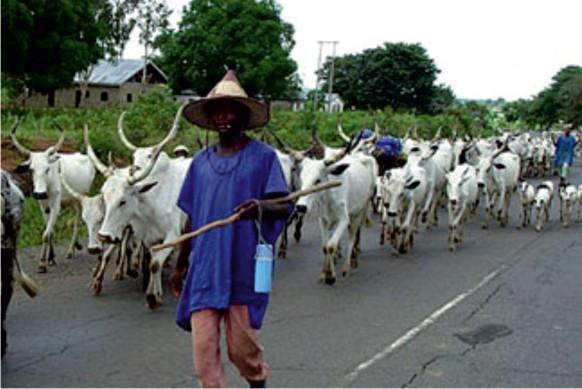 Fulani-Herdsmenon-Igboland