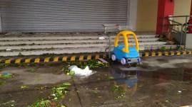 typhoon-nina1