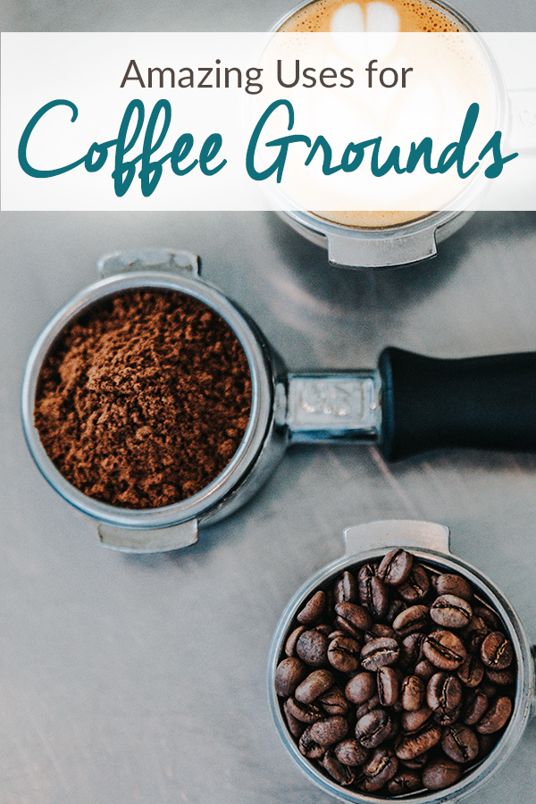 """Three espresso portafilters lined up. One filled with beans, one filled with grounds, and the final one filled with a shot of espresso and milk designed to look like a tiny latte. Over the image are the words """"Amazing Uses for Coffee Grounds"""""""