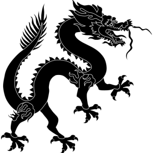 Chinese Black Dragon - Photo by Angelus