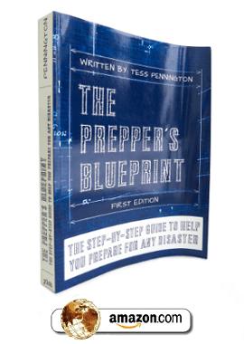 The Preppers Blueprint Economic Collapse Blog