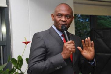 Elumelu calls for hike in electricity tariff