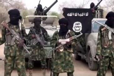 Boko Haram's reinforced strategy of ambush attacks.