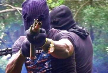 Gunmen kill Ekiti director in bedroom