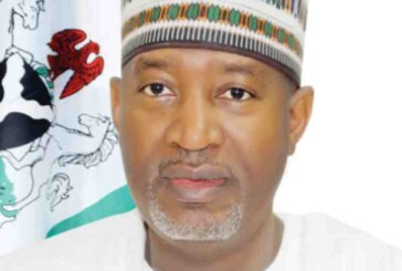Emirates resumes Nigerian flights as UAE begins visa issuance
