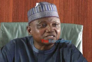 Garba Shehu Apologises for False Information on Kidnapped Schoolboys