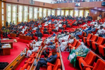 Reps urge Buhari to suspend 774,000 jobs scheme, reinstate sacked officials