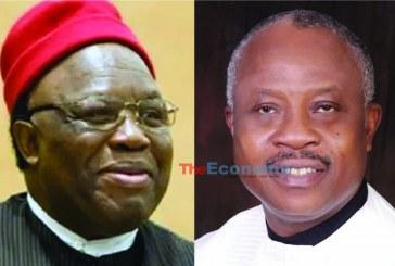 Ohanaeze: Emenike urges Obiozor to address Igbo youths' frustrations