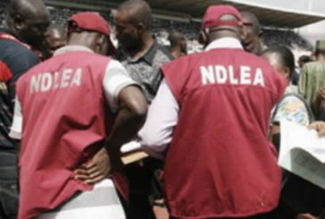 How we nabbed Chadian lady who hid heroin in private parts –NDLEA