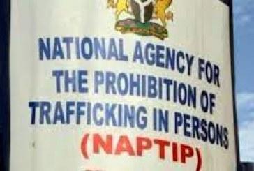 NAPTIP seals off baby factory in Abia