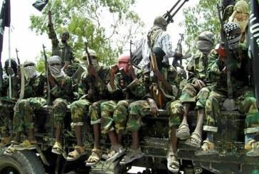 Nigerian Army Secretly Releases over 1000 ex-Boko Haram Fighters in Borno
