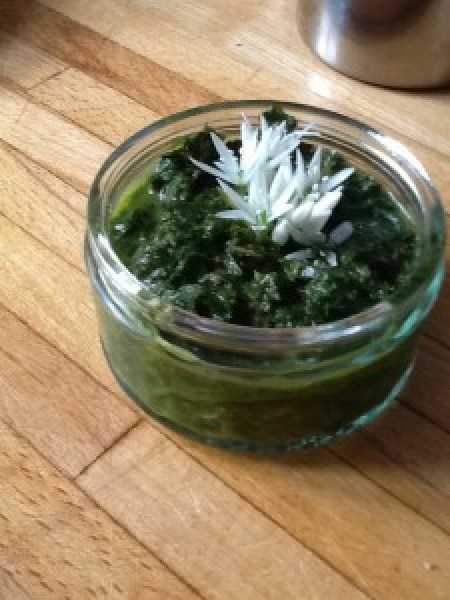 wild garlic and jack-by-the-hedge