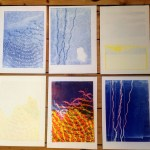 print projects monoprint sea series