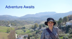 The Educational Tourist in Ronda, Spain, Choose the right toy, www.theeducationaltourist.com