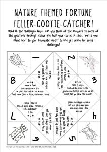 Nature Themed Fortune Teller Cootie Catcher from Teachers Pay Teachers, Travel Activities for KIDS using paper, www.theeducationaltourist.com