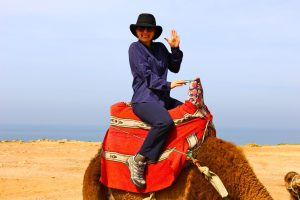 Online Travel Planning - The Educational Tourist riding a camel