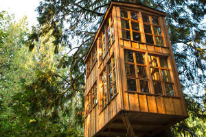 Trillium treehouse room, photo from treehouse point in Seattle, WA, unusual hotels with kids
