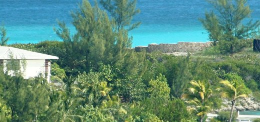 Nassau Bahamas: Visit with the Kids