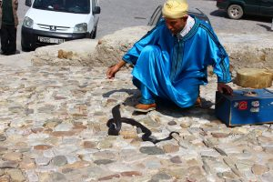 Snake charming in Tangiers, Morocco.