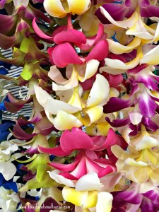 Colorful leis, Flowers of Hawaii, www.theeducationaltourist.com