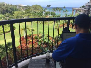 man working on computer with ocean view, Hilton Waikaloa Village, www.theeducationaltourist.com