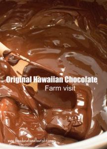 bowl of melted chocolate with spoon, Original Hawaiian Chocolate, www.theeducationaltourist.com