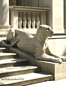 Stone lioness by Edward Clark Potter outside the Morgan Library, Morgan Library, NYC - Visit with KIDS, www.theeducationaltourist.com
