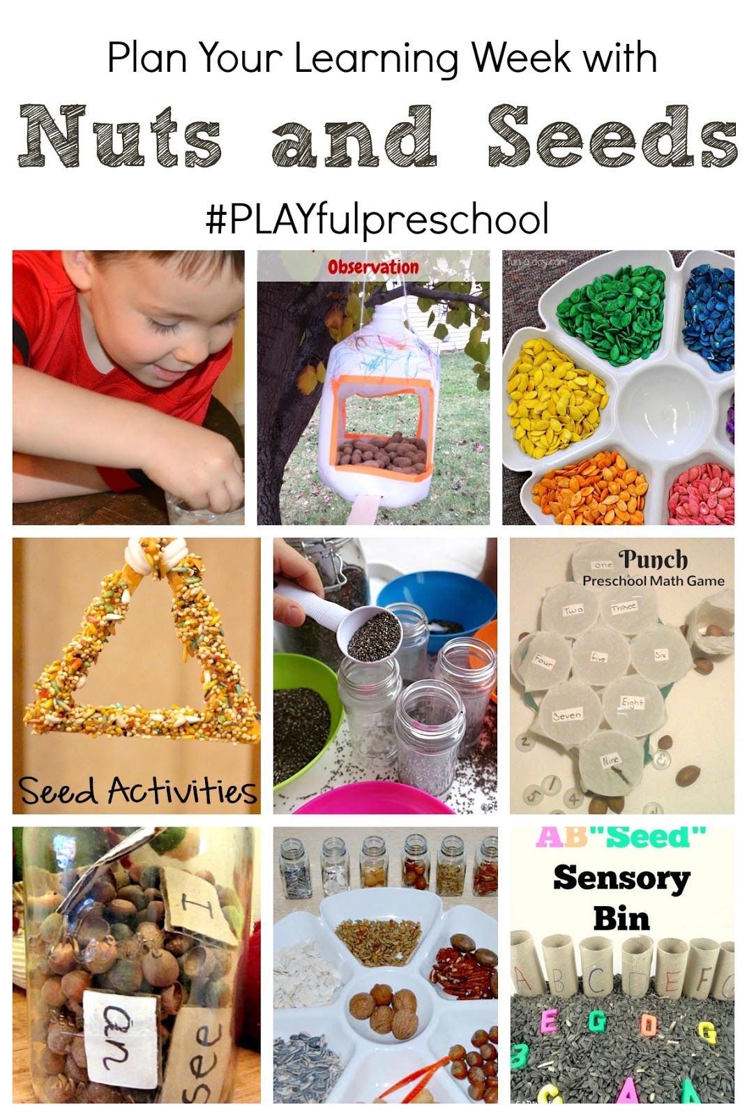 Free Preschool Thematic Lesson Plans Playfulpreschool