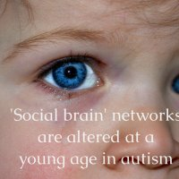 'Social brain' networks are altered at a young age in autism
