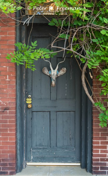 Horned Door