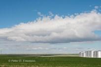 Montana Horizon