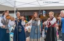 Norwegian Fiddlers