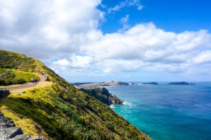 The northern most in New Zealand
