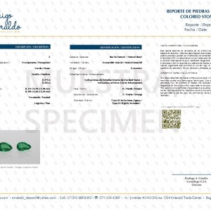 certificate 002971