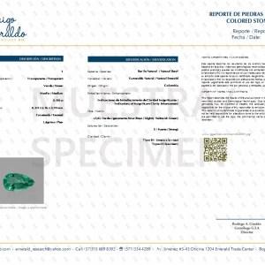 Certificate 2994