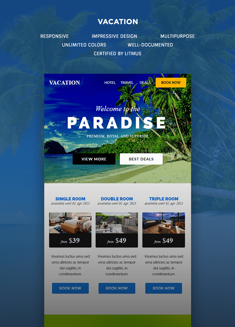 Vacation Responsive Newsletter Buy Premium Vacation Responsive Newsletter