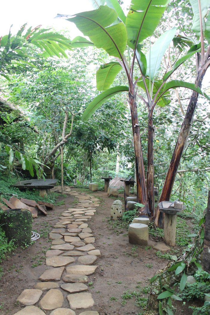Bali Pulina