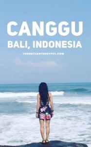 Canggu Beaches, Bali, Indonesia www.TheEnchantedGypsy.com