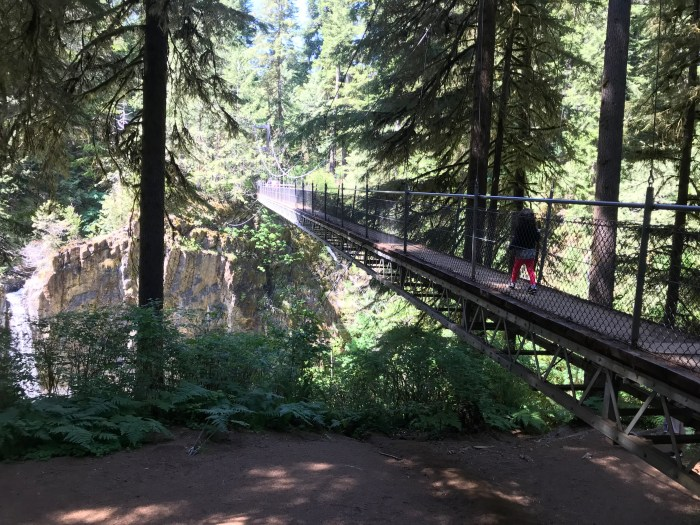 Drift Creek Falls Oregon