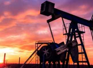 global crisis and oil prices