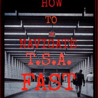 how to navigate tsa fast
